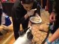 doggy-appetizers-blogpaws-2014