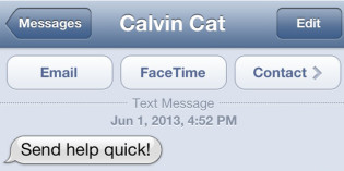 Text from cat: The Chase