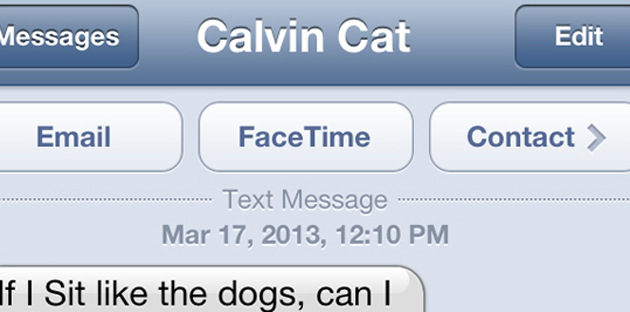 Calvin sits too text rectangle