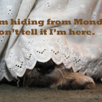 Hiding from Monday