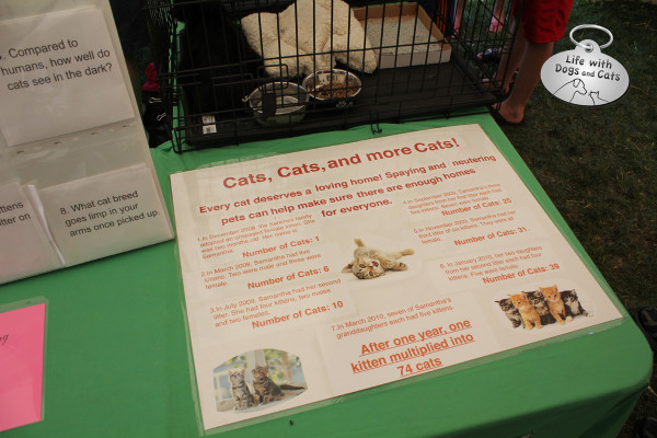 Somerset County 4H Fair:  poster on the importance of spaying and neutering cats