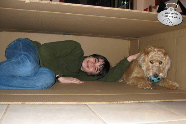 From years ago, my son and Rosie share a box