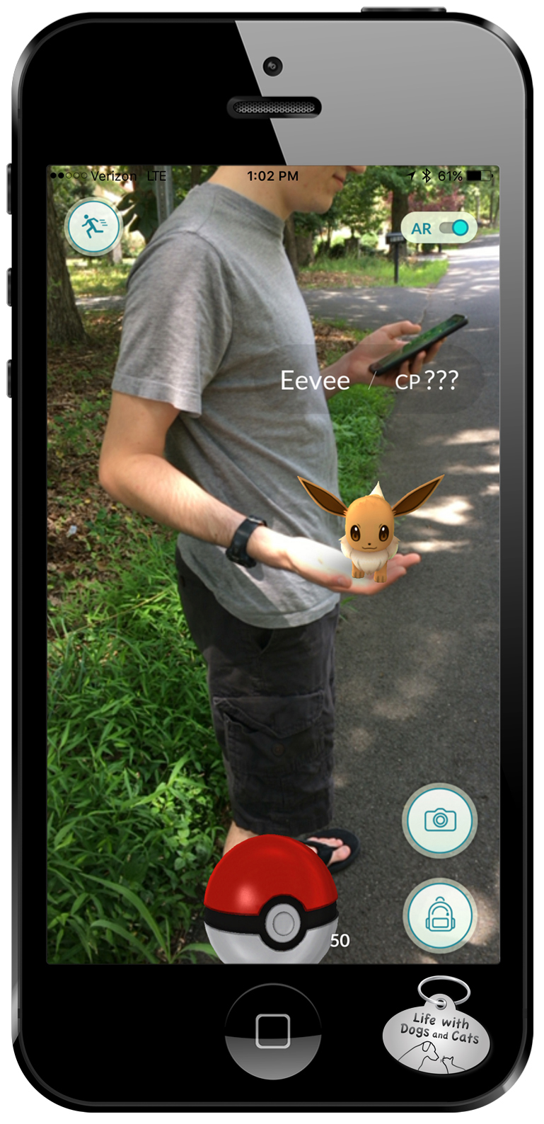 Playing Pokemon Go, I found a fox-like Eevee in our neighborhood. It hopped up in Aaron's hand and I caught it.