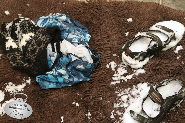 Aaron left his bathing suit, ski hat and snow-filled sandals on the rug.