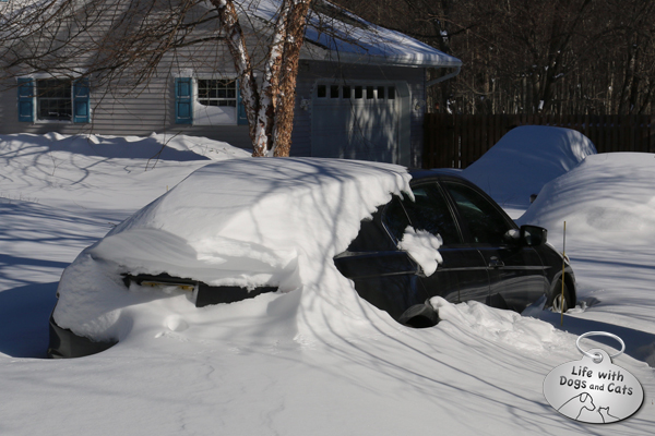 Aaron's car had a cool drift that stuck out about 2 feet from the back of his car.