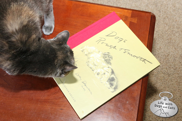 Athena wishes she has thumbs so she can turn the pages to the one with the cats on it.