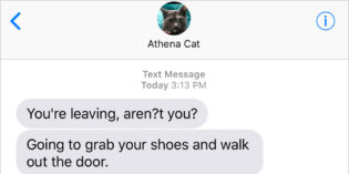 Text from Cat: Taking Leave