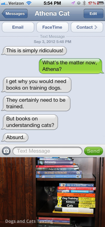 Text from Cat: You have books on how to understand your cat? Absurd!