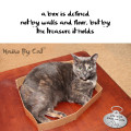 Haiku by Cat: a box is defined / not by walls and floor, but by / the treasure it holds
