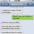 Text from Cat: Holding the dog's ball for ransom.