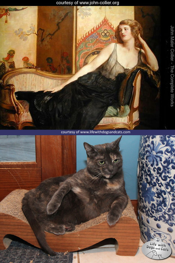 Cat imitating art