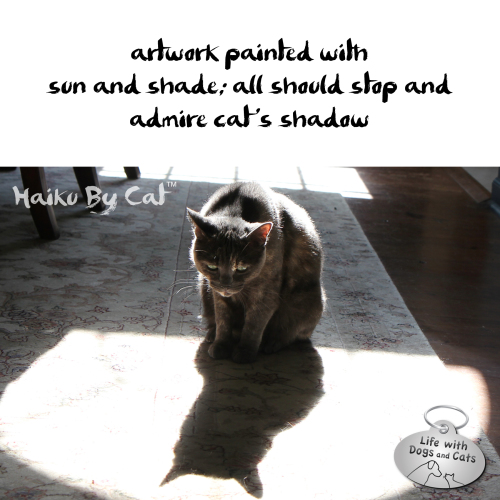 Haiku by Cat: artwork painted with / sun and shade; all should stop and / admire cat's shadow