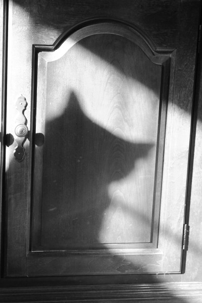 Calvin casts a large shadow on the door of my bookcase. It probably made him just a little extra full of himself.
