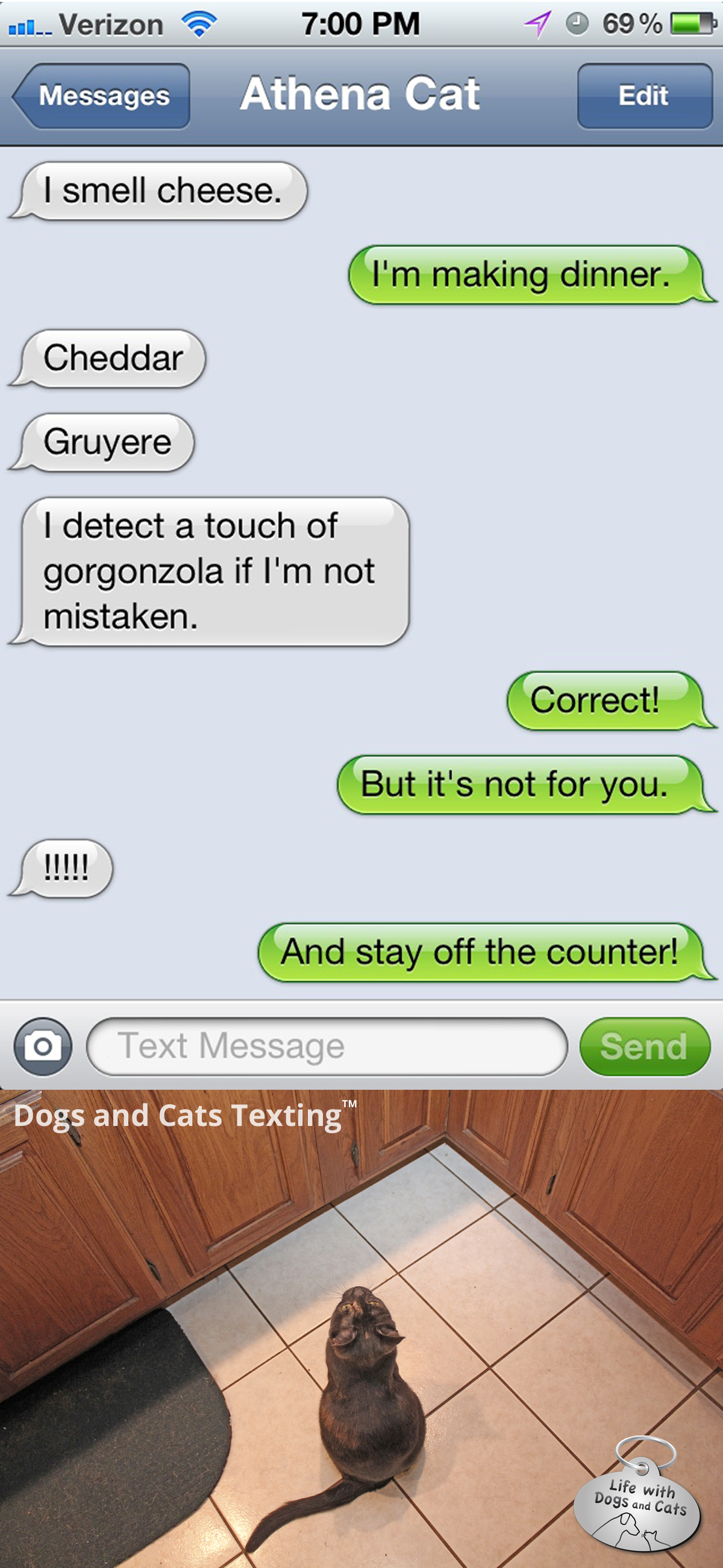 Text from Cat: Say cheese! : Life with Dogs and Cats