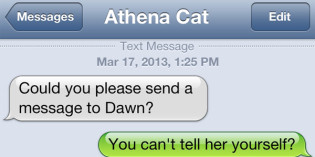 Text from cat: Surrounded