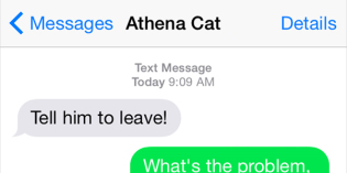Text from Cat: What is this word?