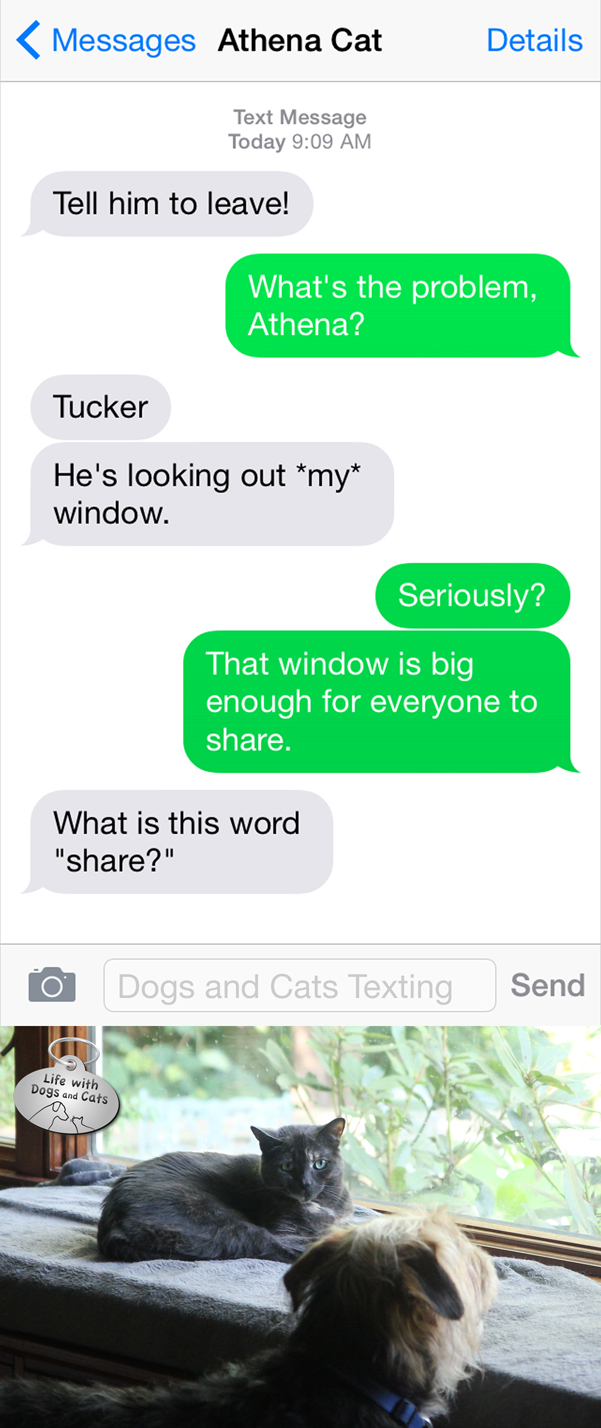 Text from Cat: What is this word share