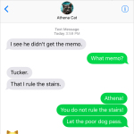 Text from Cat: The memo
