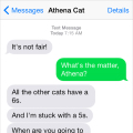 Text from Cat: I want the new iPhone