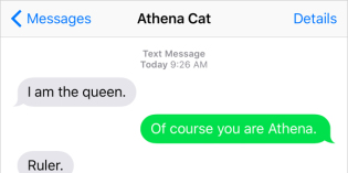 Text from Cat: All shall bow before my throne