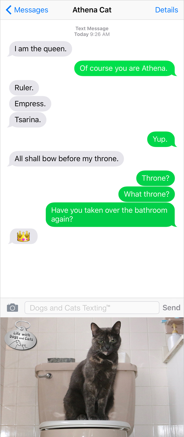 Text from Cat: All shall bow before my throne. Me: Have you taken over the bathroom again?