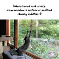 Haiku by Cat: talons honed and sharp / leave window's surface unscathed / clearly indifferent