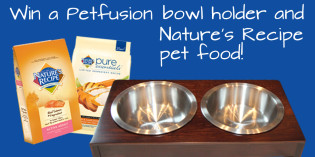 Giveaway: Petfusion bowl holder with Nature's Recipe pet food