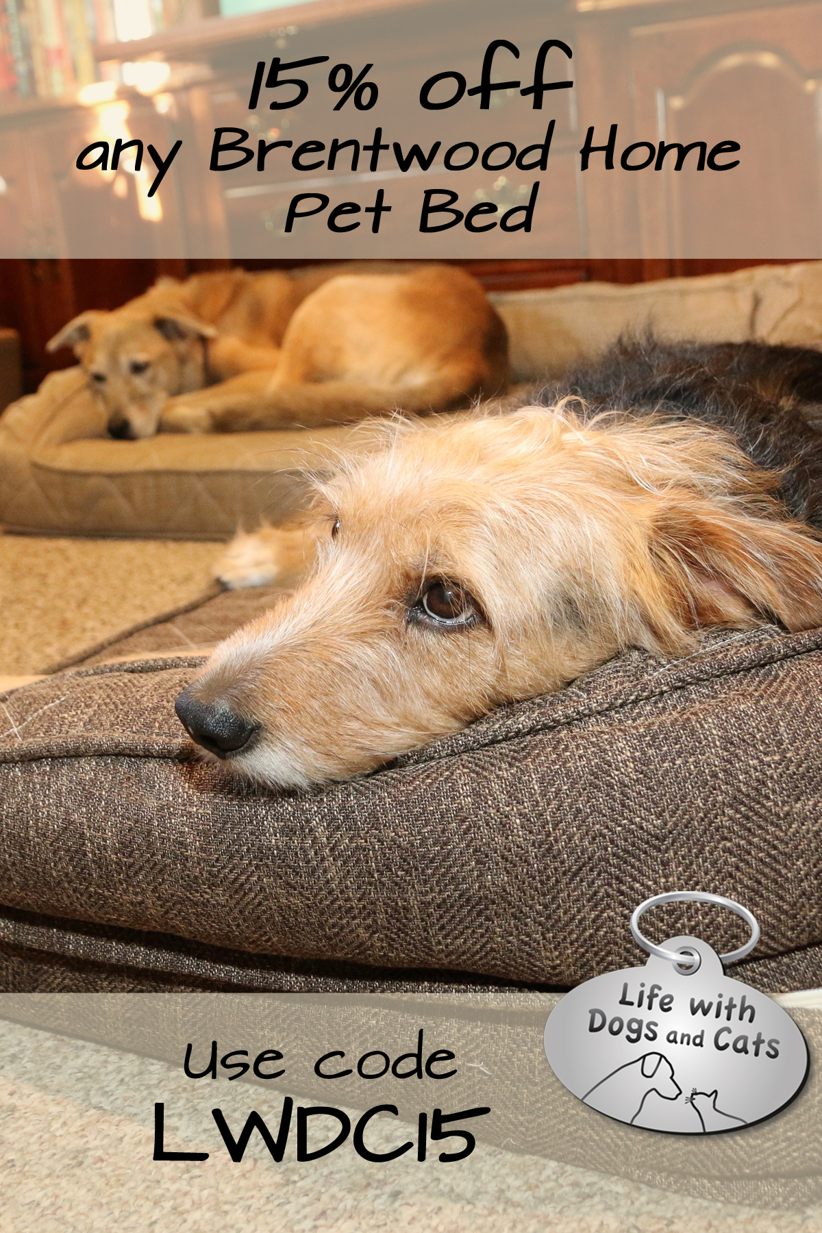15% off Brentwood Home Pet bed code LWDC15