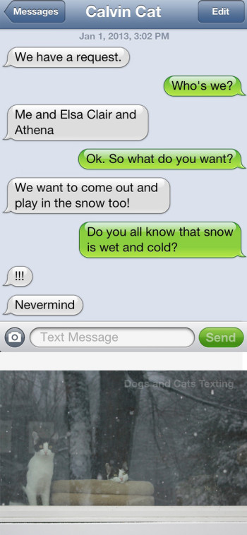Text from cat: We want to play in the snow. Text from me: Do you know snow is wet and cold?