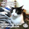 I Don't Always Help With the Laundry But When I Do It's After The Clothes Are Clean