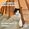 I don't always judge what you're wearing, But what were you thinking?