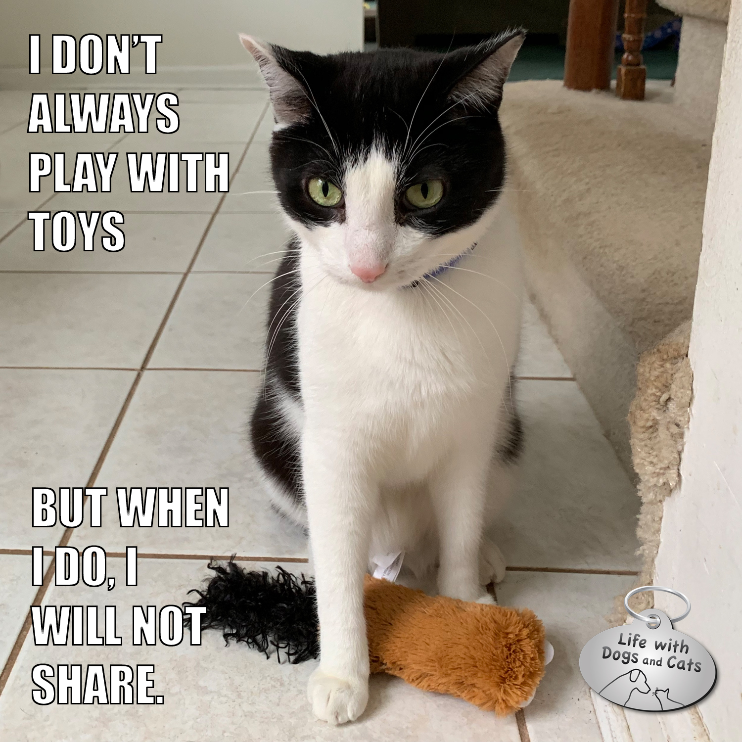 I don't always play with toys, but when I do, I will not share.