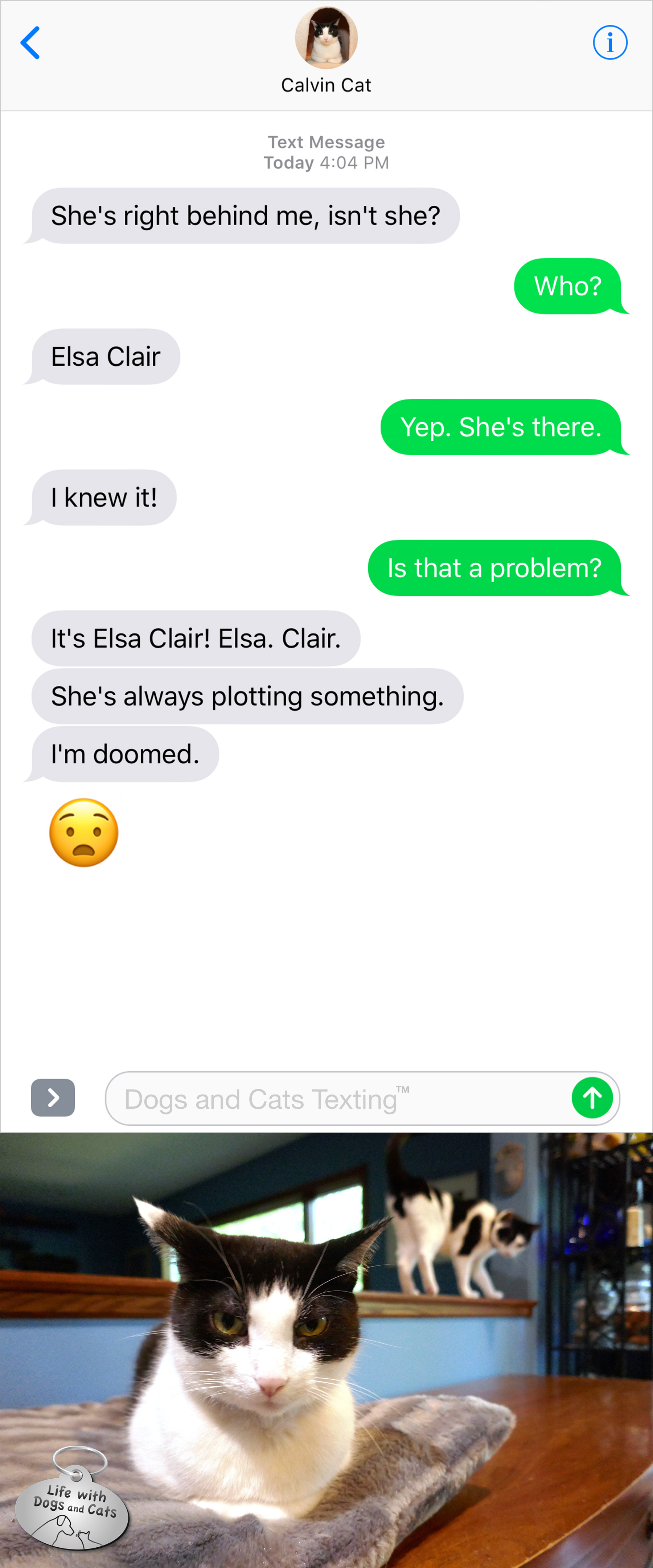 #TextFromCat She's right behind me, isn't she? Me: Yep, she's there. Is that a problem? Cat: It's Elsa Clair. Elsa. Clair. She's always plotting something. I'm doomed.