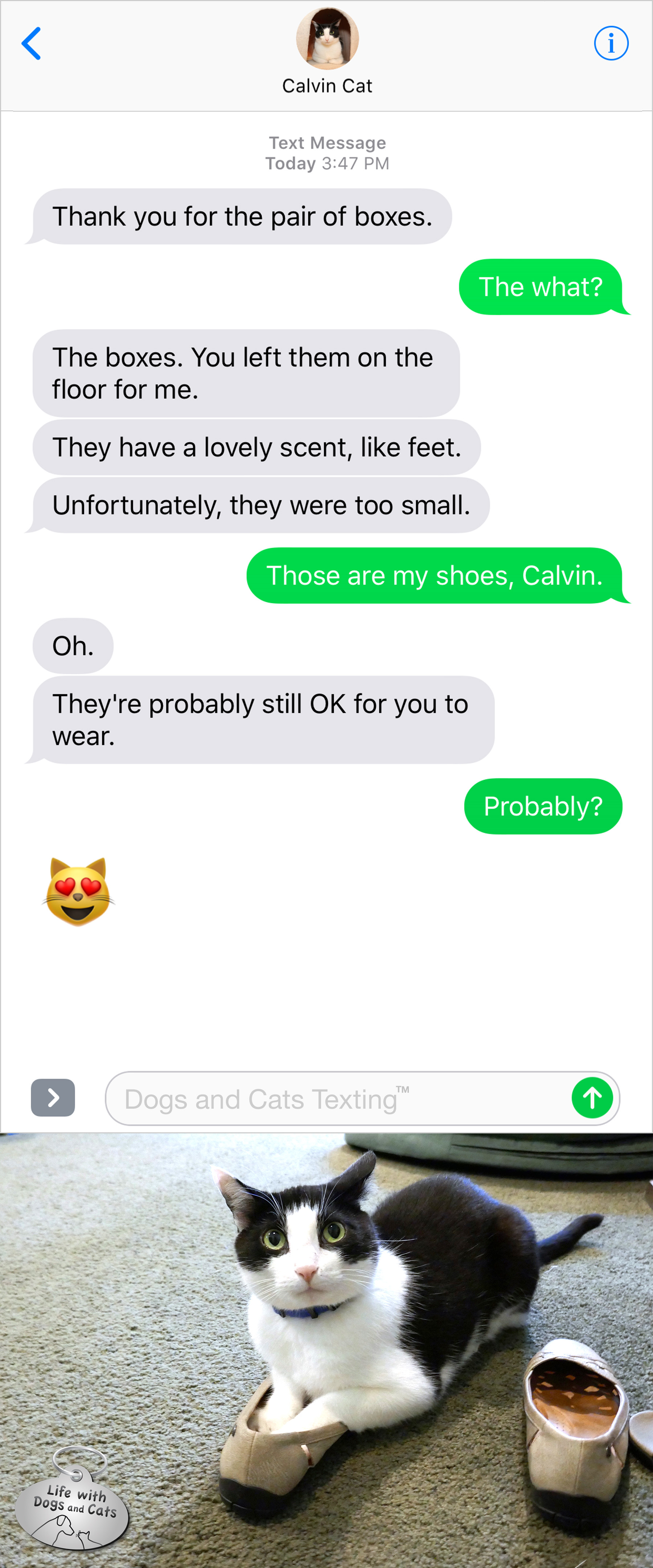 #TextFromCat Thank you for the boxes. Me: The what? Cat: The boxes. You left them on the floor for me. Me: Those are my shoes, Calvin. Cat: Oh. They're probably still okay for you to wear.