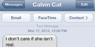 Text from cat: Still friends