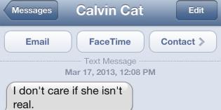 Text from cat: Still friends