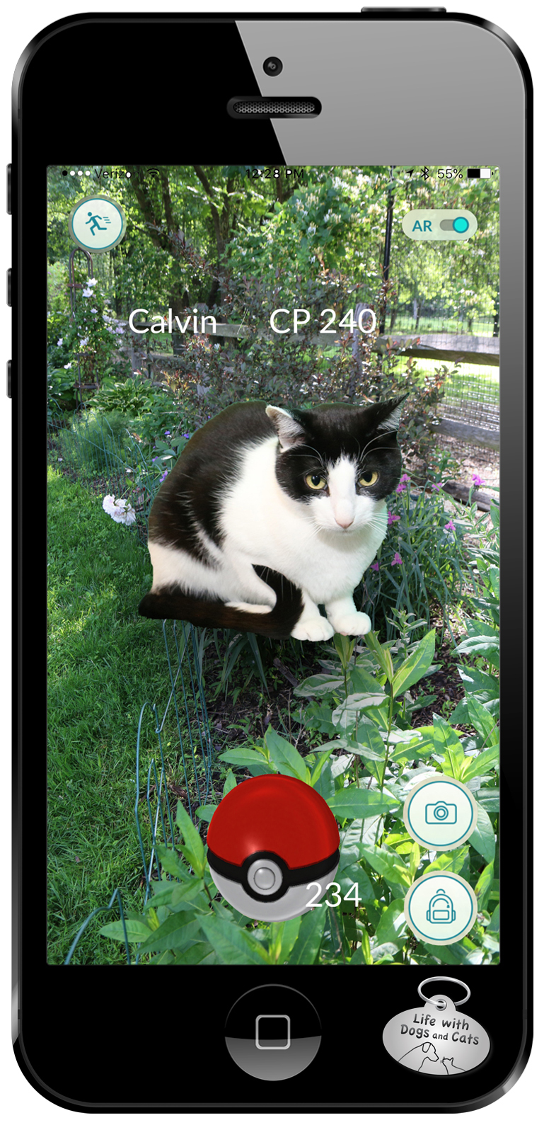 I found another Calvin in the garden. I think cats spawn other cats. #PokemonGo