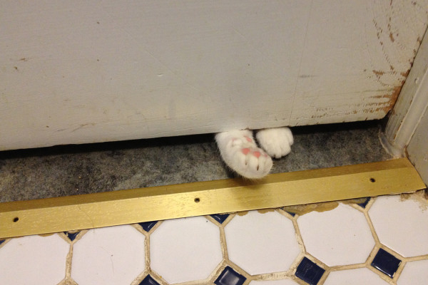 Calvin foot under bathroom door