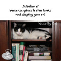 Haiku by Cat: Definition of / bookcase: place to store books / and display your cat