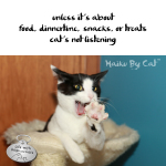 Haiku by Cat: Listening