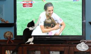 Calvin, #TeamUSA Women's World Cup Soccer Fancat