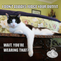 I don't always judge your outfit. Wait. You're wearing that?