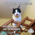 I Don't Always Do Impressions, but when I do, they're hilarious. #MostInterestingCatInTheWorld