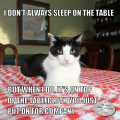 I Don't Always Sleep On The Table but when I do, it's on top of the tablecloth you just put on for company. #MostInterestingCatInTheWorld