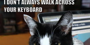 I Don't Always Walk Across Your Keyboard #TheMostInterestingCatInTheWorld