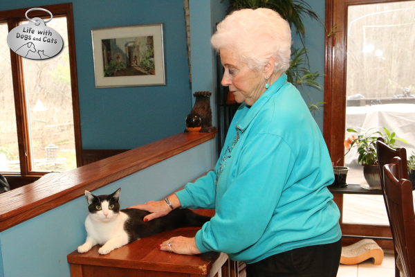 Grandma petting Calvin the cat