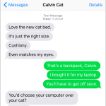 Text from Cat: Cat vs. laptop