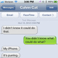 Text from cat: I didn't know my cell phone could purr. Text from me: You have it set to vibrate.