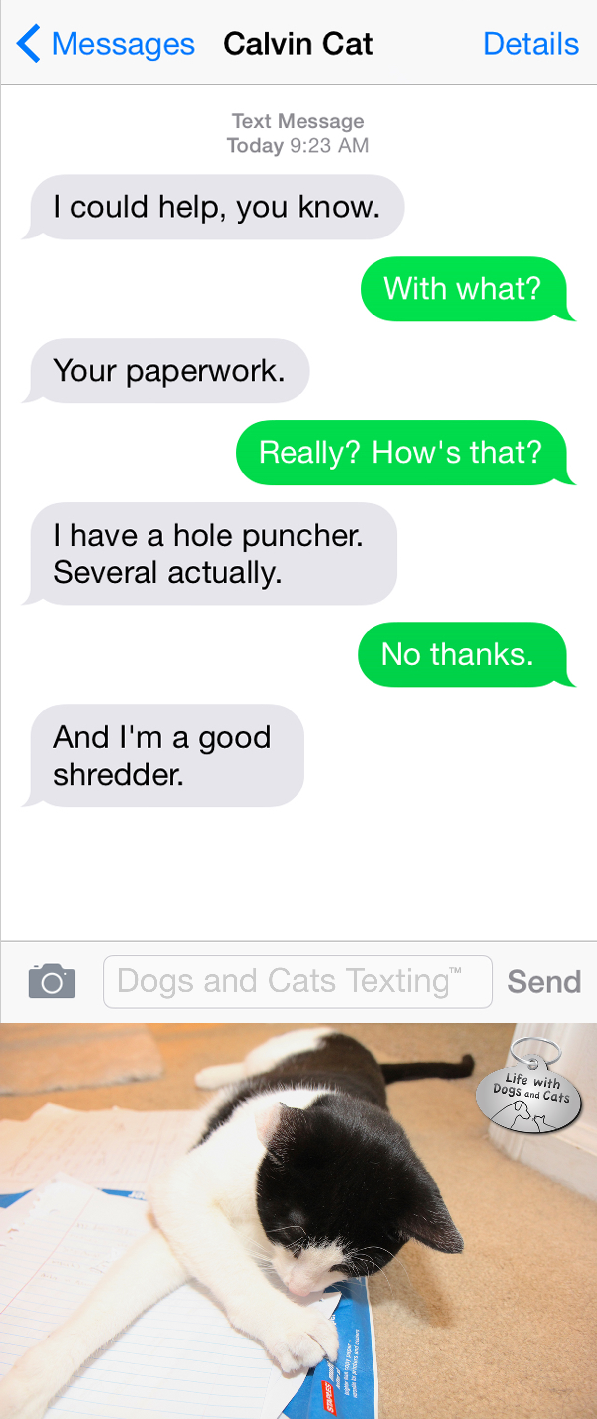 Text from Cat Calvin office help hole puncher shredder