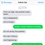 Text from Cat: Do not mock the panther